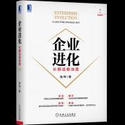 华为千亿出售荣耀,中国企业到底如何完成战略进化?